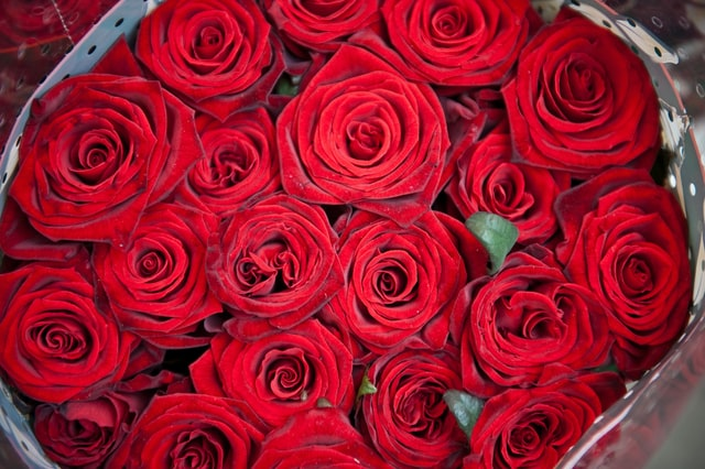 Red_Rose_Bouquet_of_Flowers